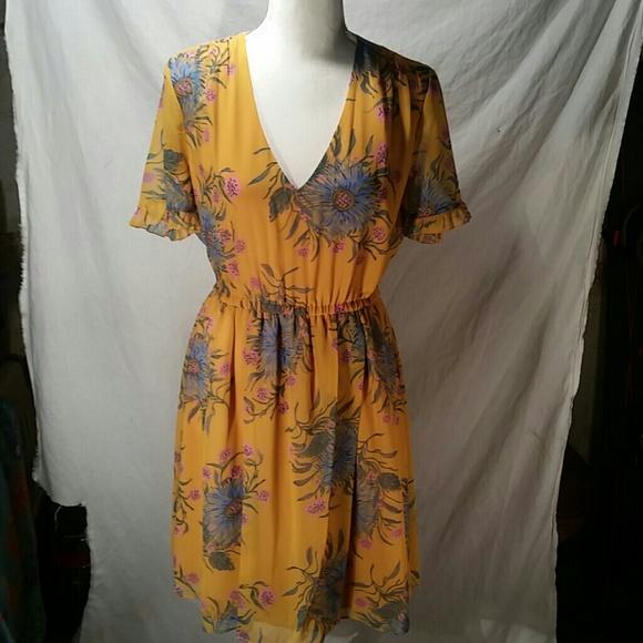 8c44a5f839 Madewell Sweetgrass ruffle sleeve dress sz 4 NEW